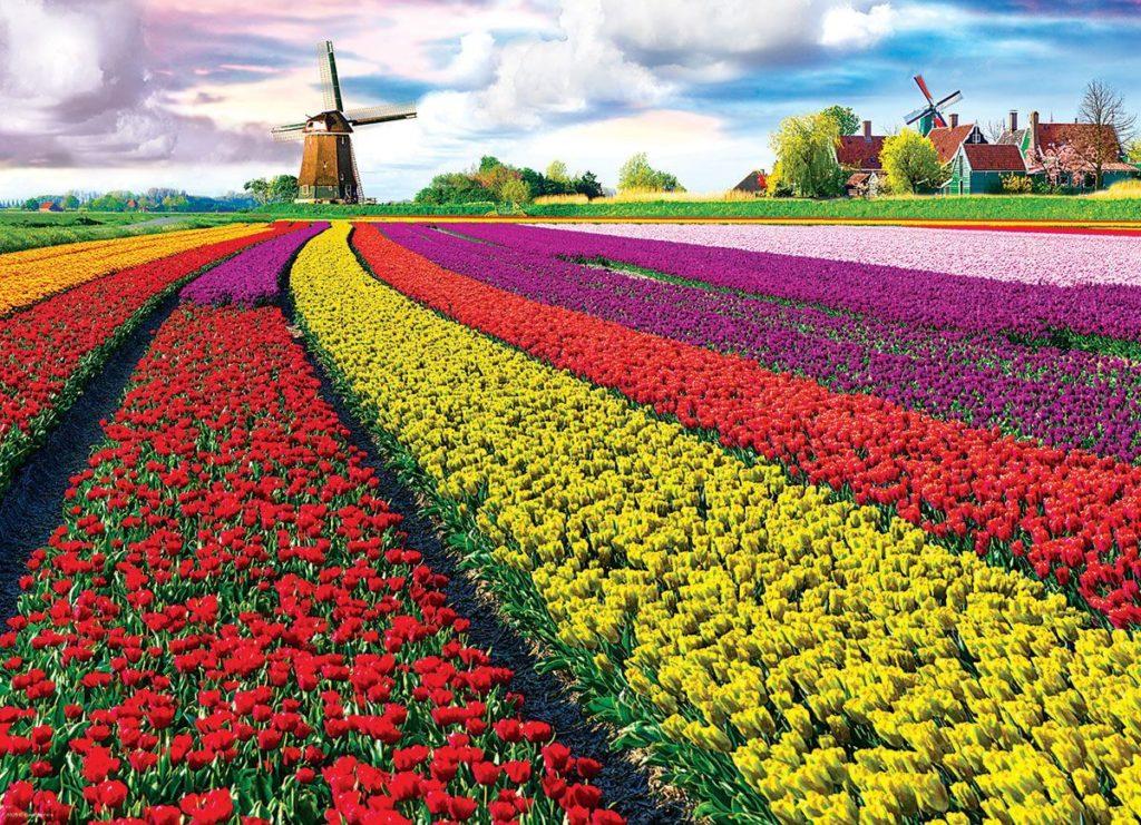 Jardines de Tulipanes Keukenhof
